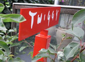 Twiggy6_3